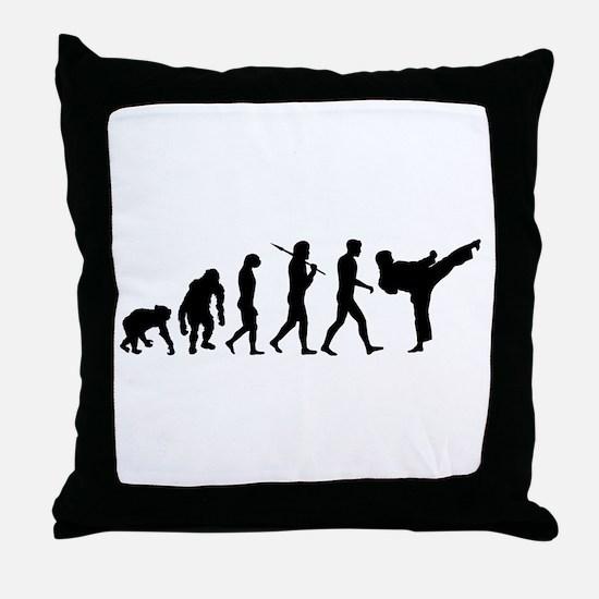 Martial Arts Evolution Throw Pillow