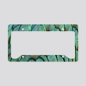Peafowl Feathers License Plate Holder