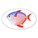 Opah Sticker