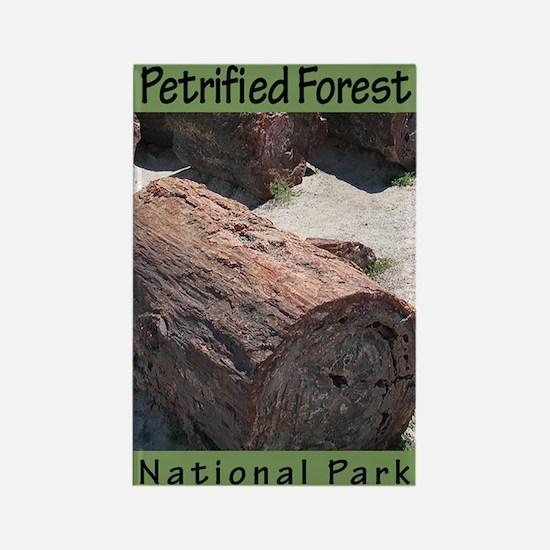 Petrified Forest National Par Rectangle Magnet