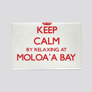 Keep calm by relaxing at Moloa'A Bay Hawai Magnets