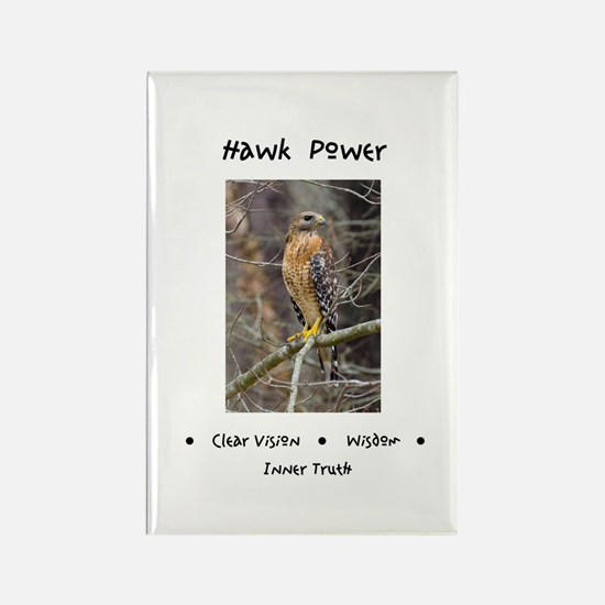 Hawk Power Animal Medicine Magnets
