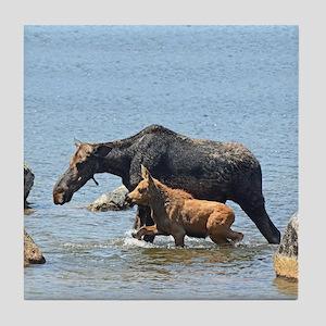 Cow & Calf Moose Tile Coaster