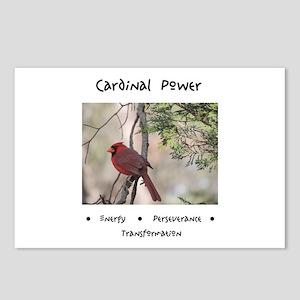 Cardinal Animal Medicine Gifts Postcards (Package