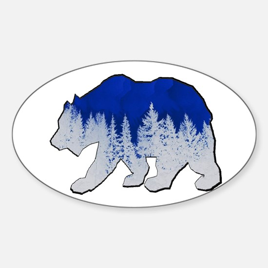 WINTER SHOWN Decal