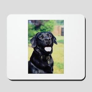 Black Lab Photo Mousepad