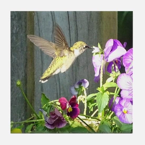Pansy Hummingbird Tile Coaster