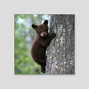 Bear Cub Climbing a Tree Sticker