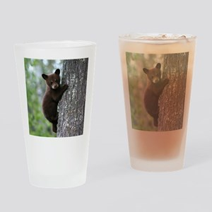 Bear Cub Climbing a Tree Drinking Glass