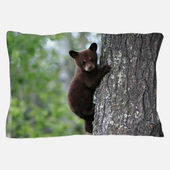 Bear Cub Climbing a Tree Pillow Case