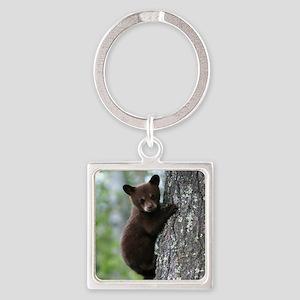 Bear Cub Climbing a Tree Keychains