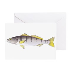 White Seabass Greeting Cards