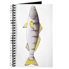 White Seabass Journal