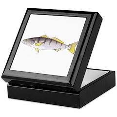 White Seabass Keepsake Box