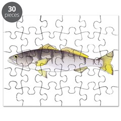White Seabass Puzzle