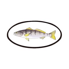 White Seabass Patch