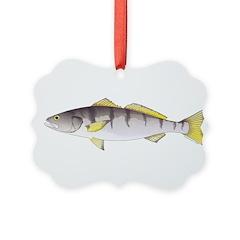 White Seabass Ornament
