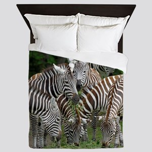 Zebra010 Queen Duvet