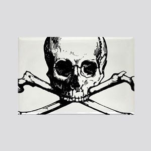Skull and Bones Magnets