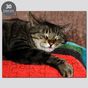Cat Snoozing Puzzle
