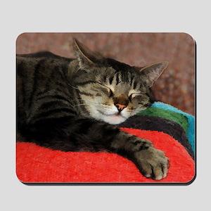 Cat Snoozing Mousepad