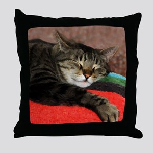 Cat Snoozing Throw Pillow