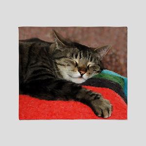 Cat Snoozing Throw Blanket