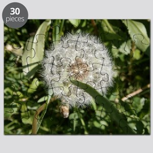 DANDELION in seed Puzzle