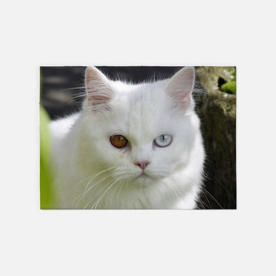 Cat010 5'x7'Area Rug