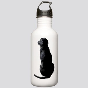 Ajax Watches the World Stainless Water Bottle 1.0L