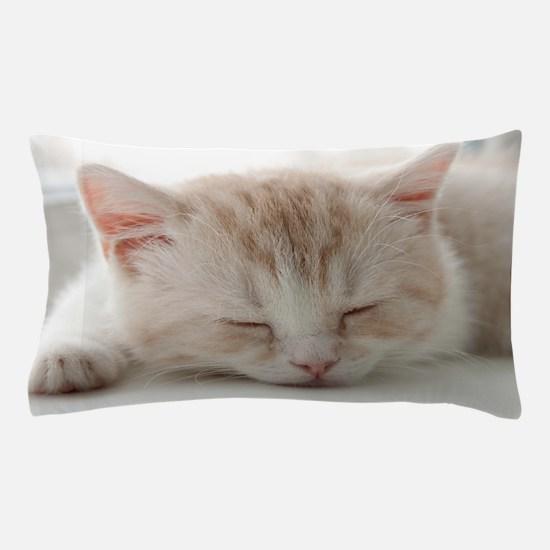 Sleepy Kitten Pillow Case