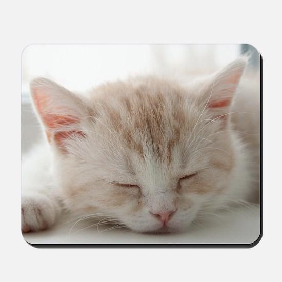 Sleepy Kitten Mousepad