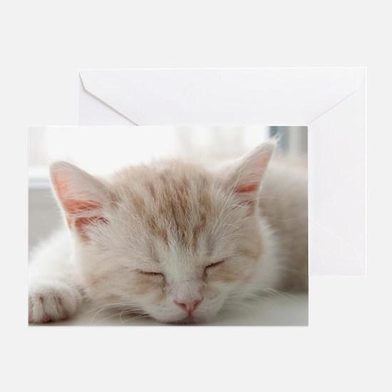 Sleepy Kitten Greeting Card