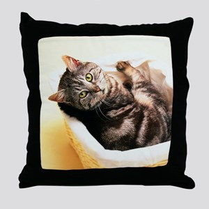 Tabby in Basket Throw Pillow