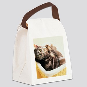 Tabby in Basket Canvas Lunch Bag