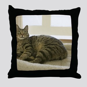 Catbed Kitty Throw Pillow