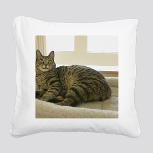 Catbed Kitty Square Canvas Pillow