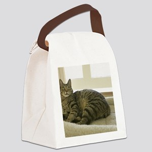 Catbed Kitty Canvas Lunch Bag