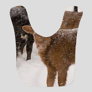 Calves in The Snow Bib