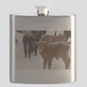 Calves in The Snow Flask