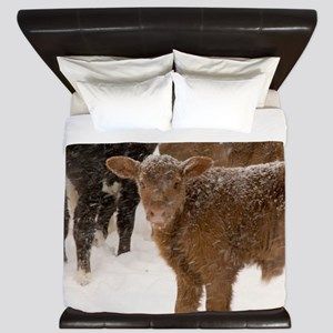 Calves in The Snow King Duvet