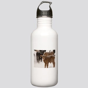 Calves in The Snow Stainless Water Bottle 1.0L