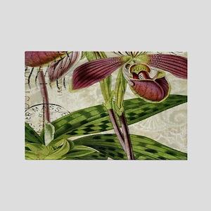 vintage french botanical orchid Magnets