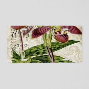 vintage french botanical or Aluminum License Plate