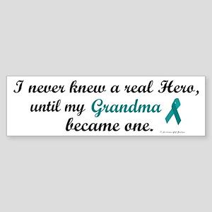 Never Knew A Hero OC (Grandma) Bumper Sticker