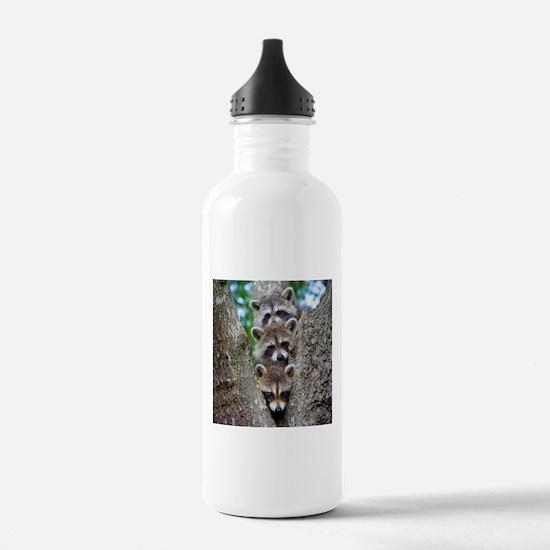 Baby Raccoons Water Bottle