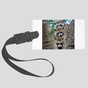 Baby Raccoons Luggage Tag