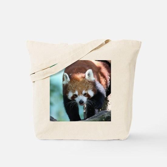RedPanda20150809 Tote Bag