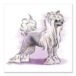 Chinese Crested Square Car Magnet 3