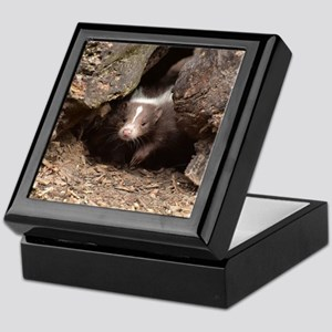 baby skunk Keepsake Box